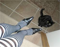 Stripy Stockings